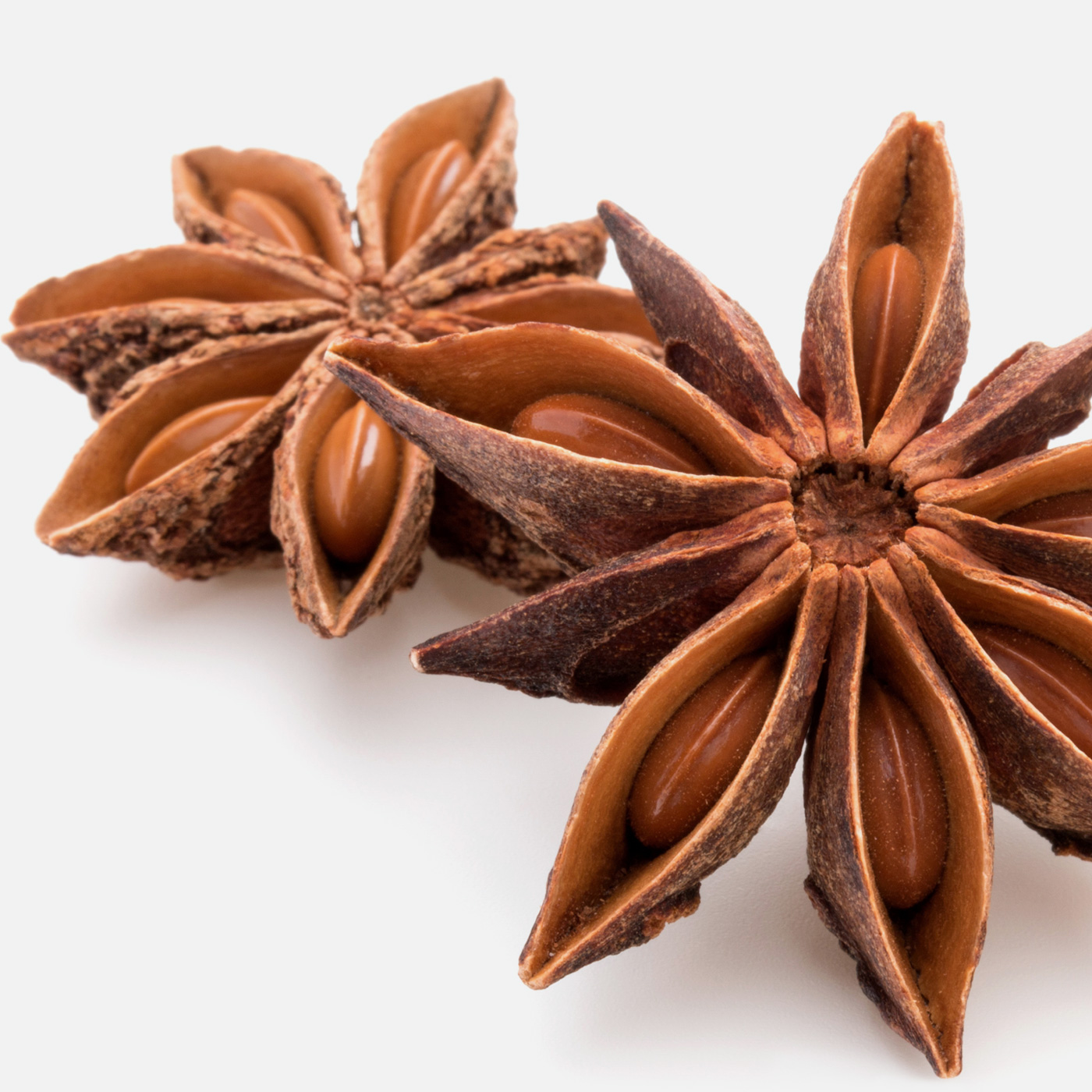 Using star anise, unlock the possibilities for flavours, aromas and sweeteners in animal feed and pet food production