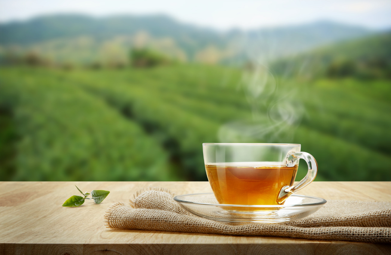 Can the humble cup of tea affect pet food manufacturing