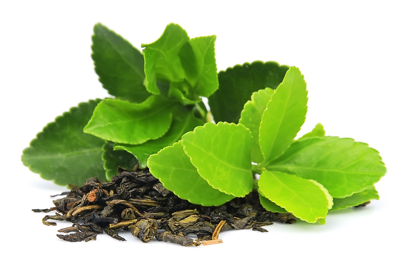 Fresh tea leaves inspiring pet food manufacture